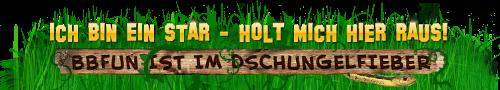 Dschungelcamp 2013