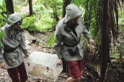 Dschungelcamp 2013 - Olivia Jones Joey Heindle