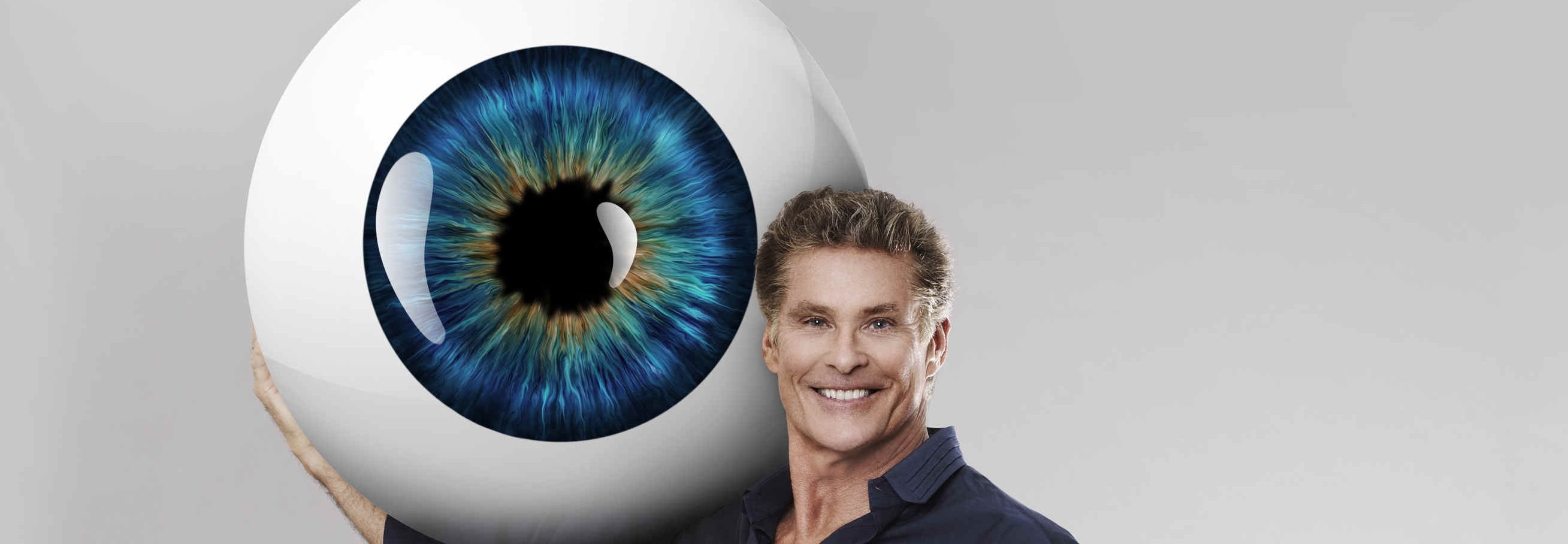 David Hasselhoff Promi Big Brother 2013 Auge