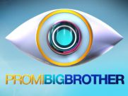 Promi Big Brother 2014 Logo
