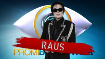 promi big brother 2013 fancy raus