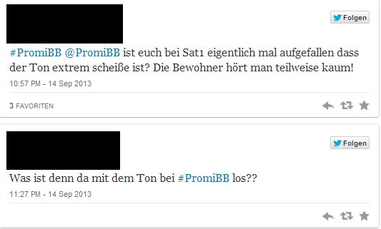 Promi Big Brother 2013: Kritik