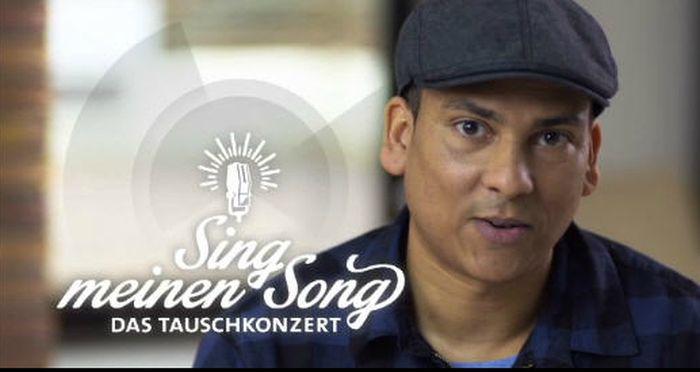 Sing meinen Song: Sänger