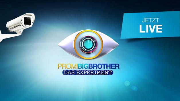 promibigbrother de live stream