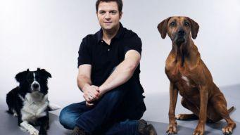 Der Hundeprofi Martin Rütter