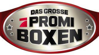 Promi Boxen-Kämpfe
