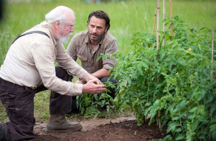 The Walking Dead - Staffel vier - Hershel und Rick