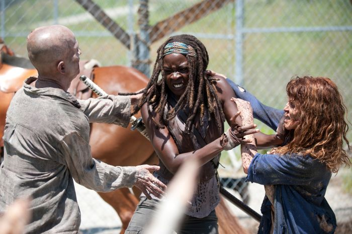 The Walking Dead - Staffel vier - Michonne.