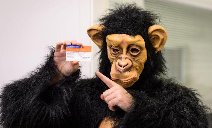 Das Jenke-Experiment Organspende - Organspender gesucht - Organspendeausweis - Jenke macht sich zum Affen