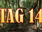 Dschungel Auszug 29.01.2015 Folge 14 Tag 14 Dschungelcamp 2015 IBES