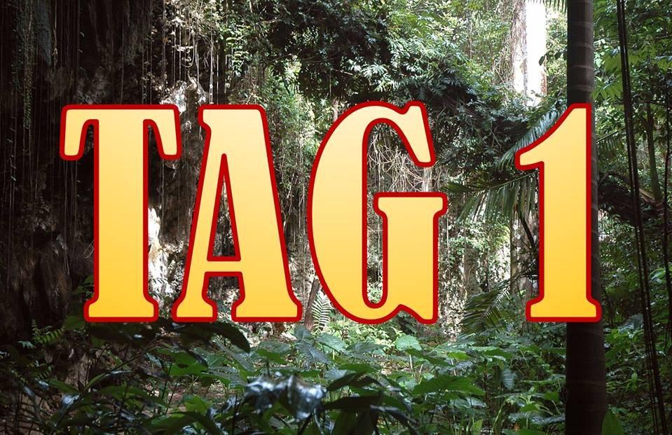 Dschungelcamp 2015 16.01.2015 Folge 1 RTL Ich bin ein Star - Holt mich hier raus Live Stream Ganze Folge anschauen
