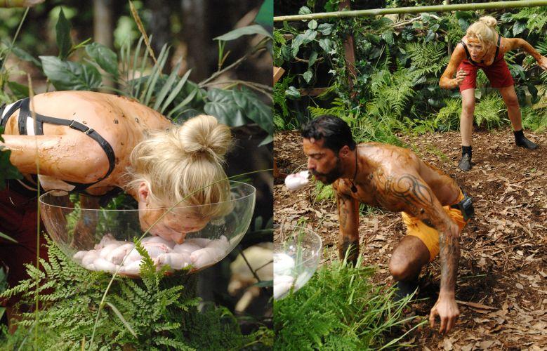 Dschungel-Sommerfest