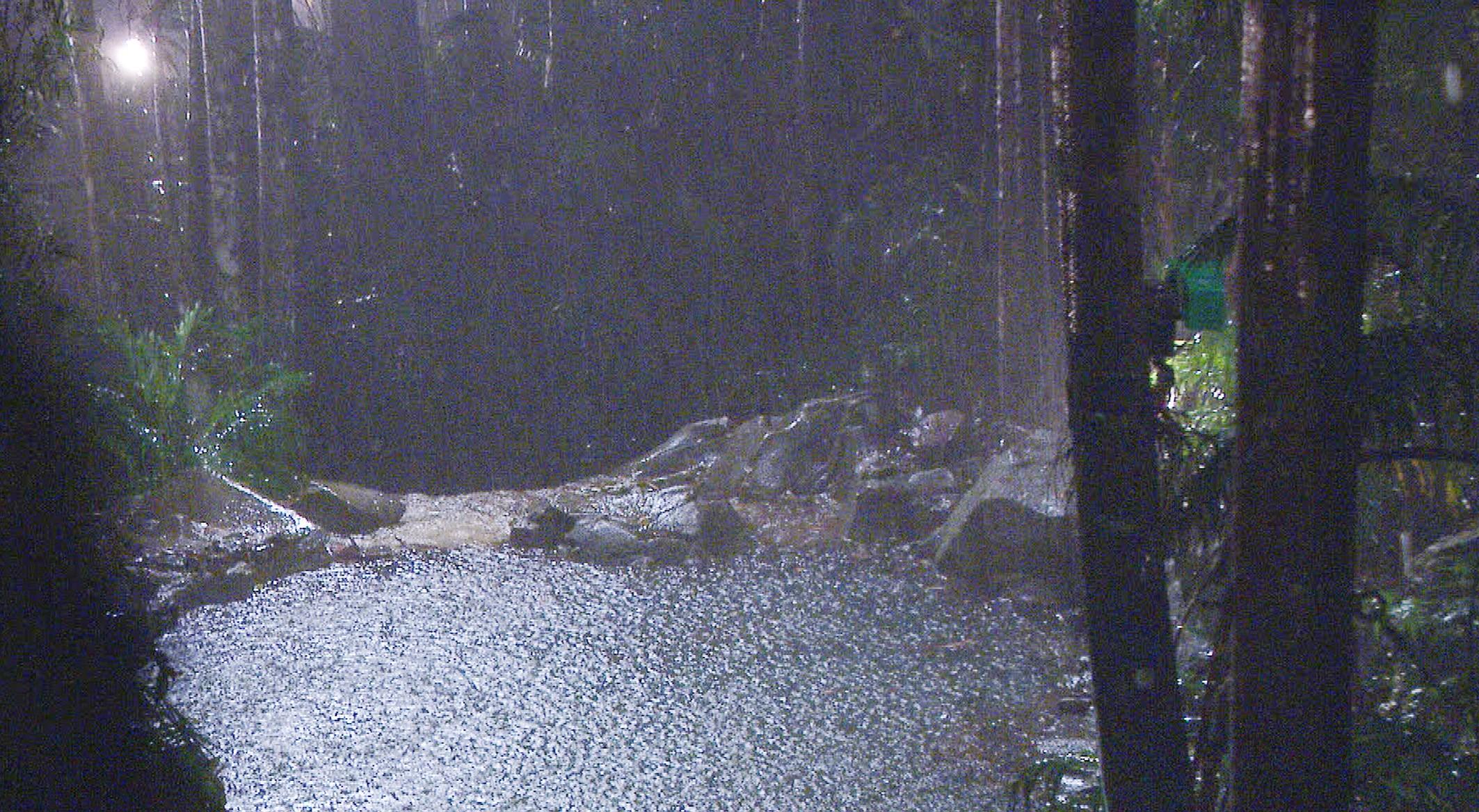 Dschungelcamp-2015-Tag-10-Regen-Sturm-Gewitter-Blitz-Donner