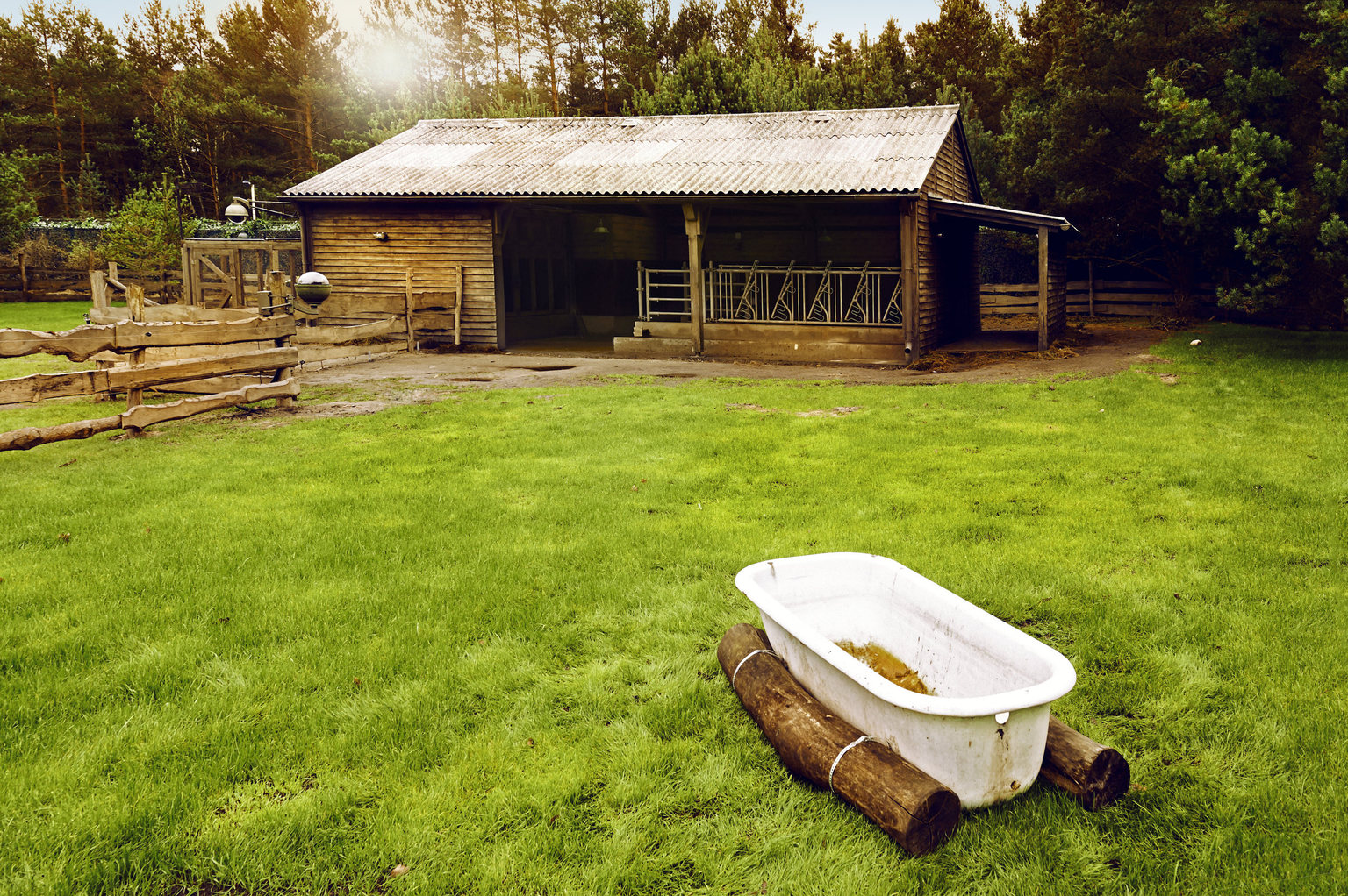 Newtopia-Gelaende-Badewanne-Sat.1-Standort