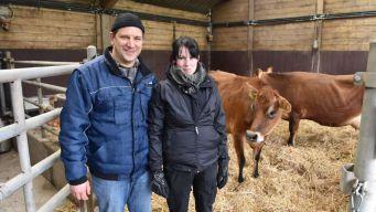 Newtopia Schwangerschaft Rinder Kuehe Bauer Heiko Terno Tieraerztin