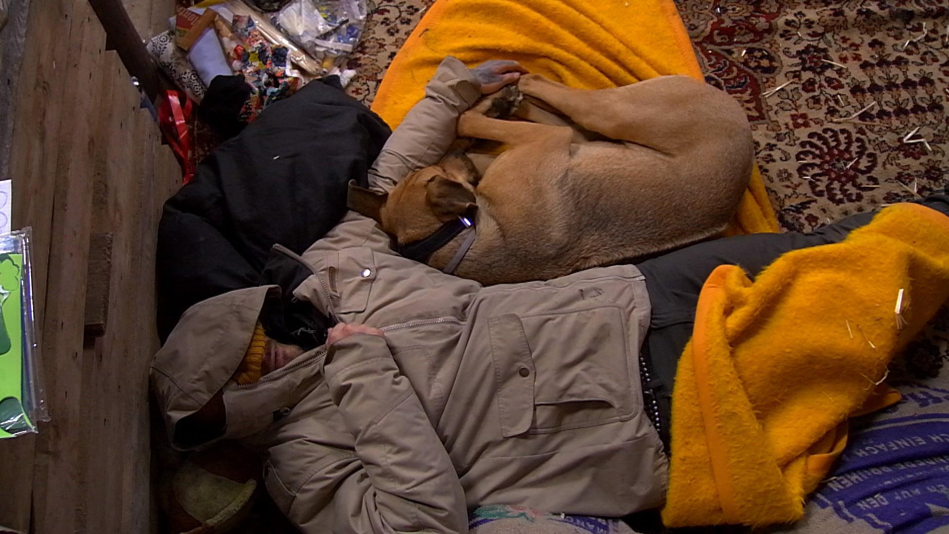 Newtopia Hund Paula Hans schlafen Folge 31 Episode 07.04.2015