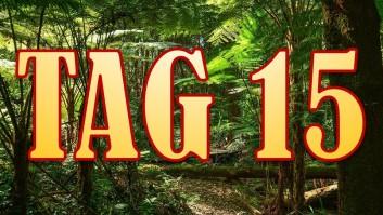 Dschungelcamp-2016-Tag-15