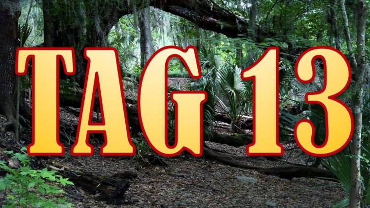 Dschungelcamp 2016 Tag 13