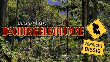 nuvolas Dschungelkolumne