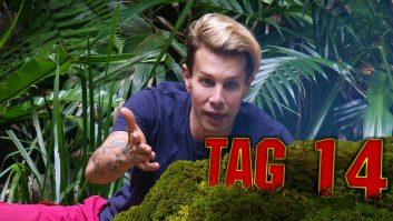 Dschungelcamp Tag 14 Florian teilt aus