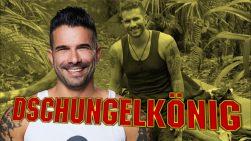 Dschungelcamp 2017 Marc Terenzi Dschungelkönig Gewinner