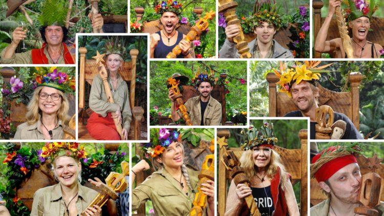 Dschungelcamp Alle Gewinner