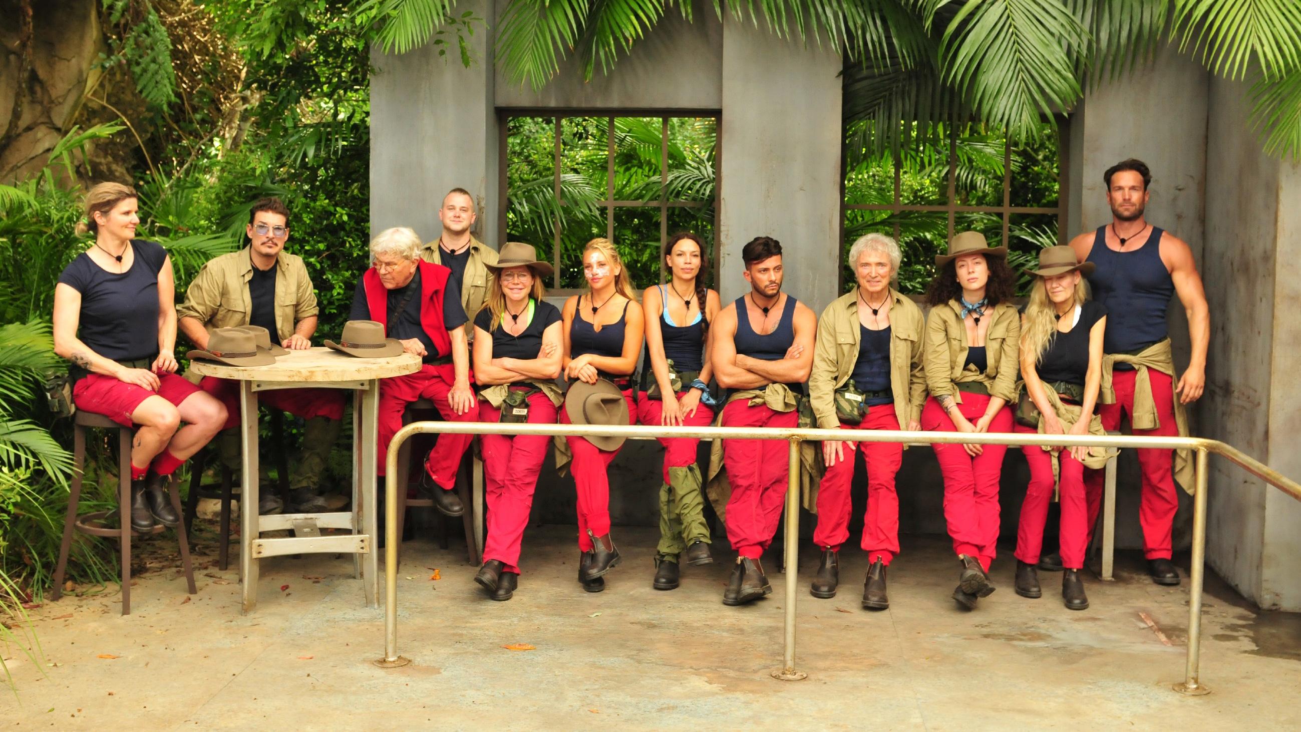 Dschungelprüfung 2019 Ergebnis Voting
