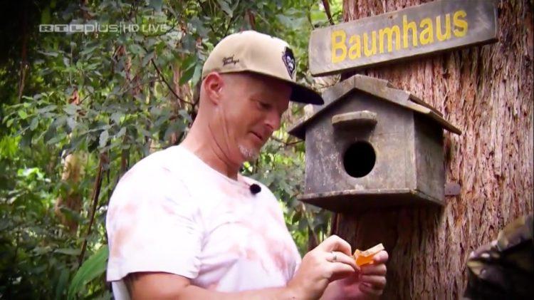 Dschungelcamp 2020 Detlef Steves Baumhaus