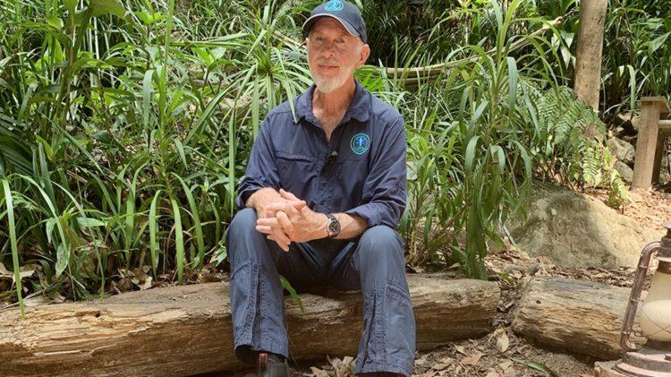 Dschungelcamp 2020 abgesetzt